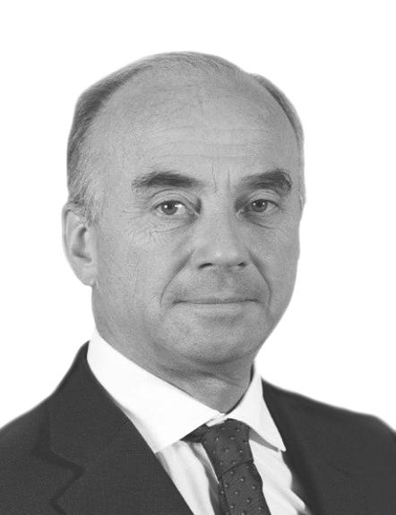 Henry Huyghues Despointes, Board Member - Independent Member